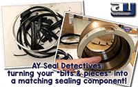 Seal Identification photo