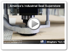 Allegheny York America's Industrial Seal Superstore