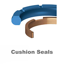 Cushion Seals
