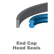 End Cap·Head